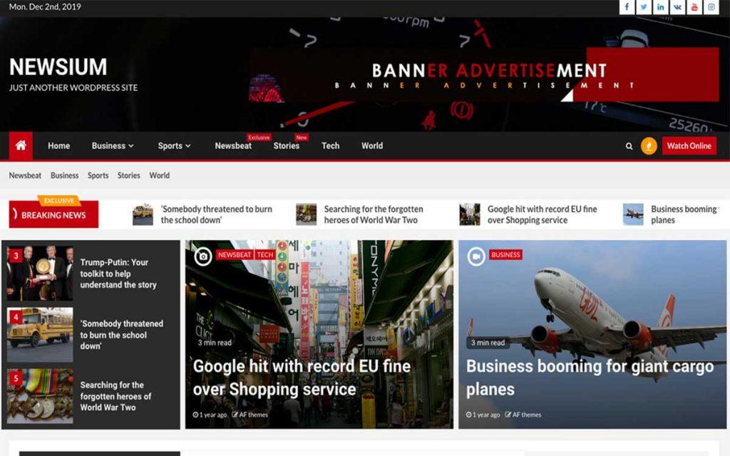 magazine WordPress theme page info