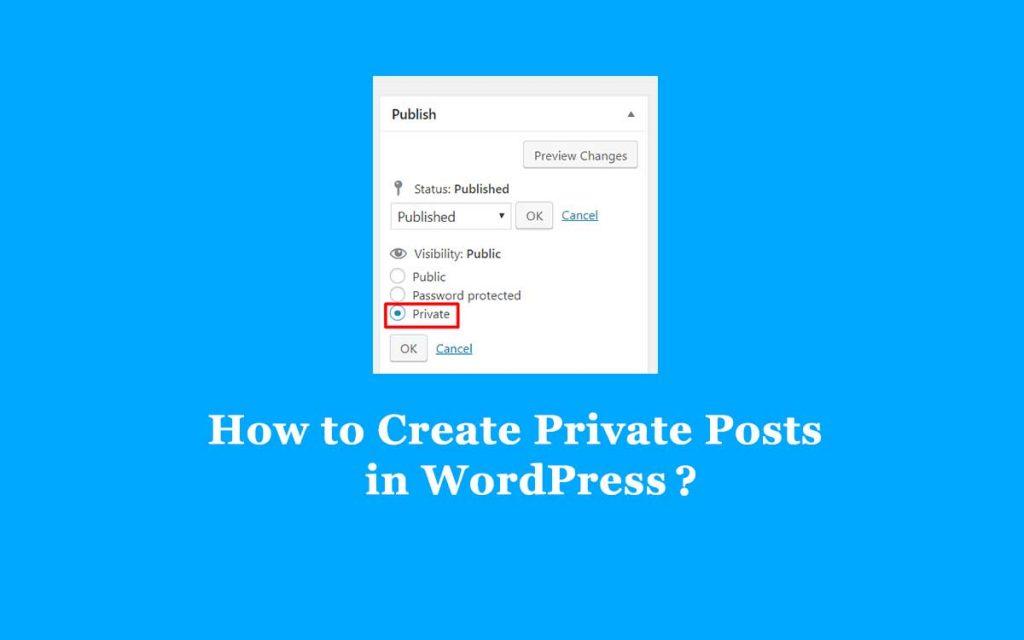 create a private posts in WordPress
