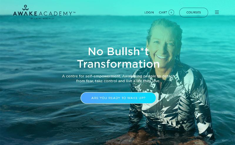 Awake Academy best ecommerce websites using WordPress