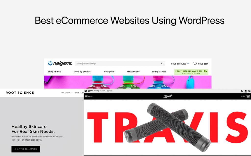 Best WordPress Website Using WordPress